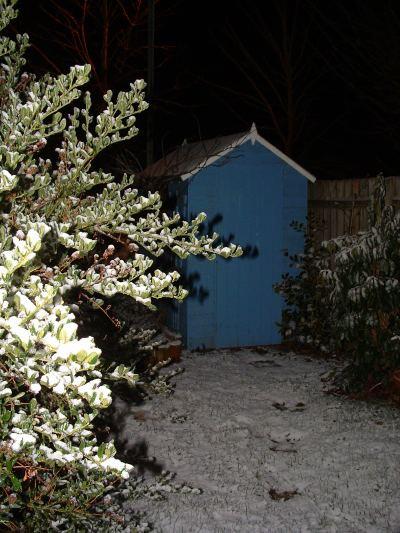 Snow_20040128_42_web