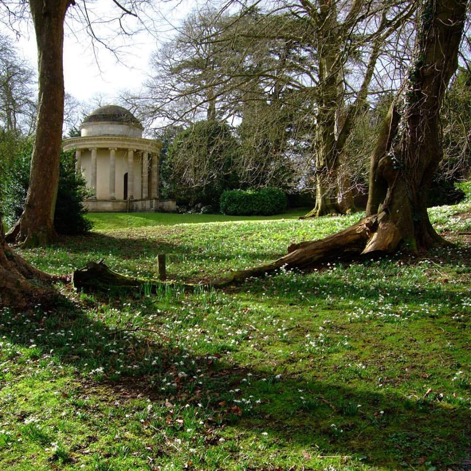 #1HappyYear Day 16: A moment of sunshine on a blustery day... #snowdrops #100HappyDays — at Stowe Landscape Gardens.