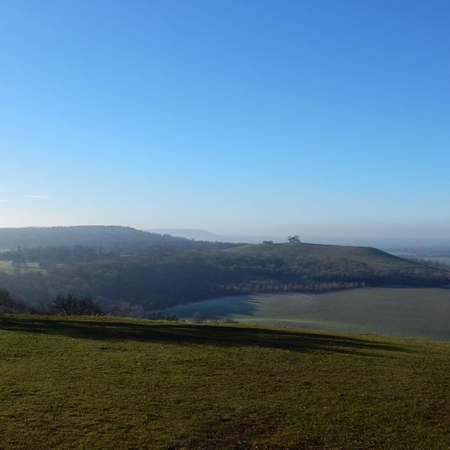 #1HappyYear Day 236 (belated): Day after Boxing Day walk with the family in the Chilterns... #100HappyDays