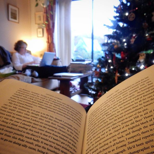 #1HappyYear Day 340: New Years Day is the bleakest out there in the wild weather but I'm tucked up with my tree, music, and Alan Bennett... #100HappyDays