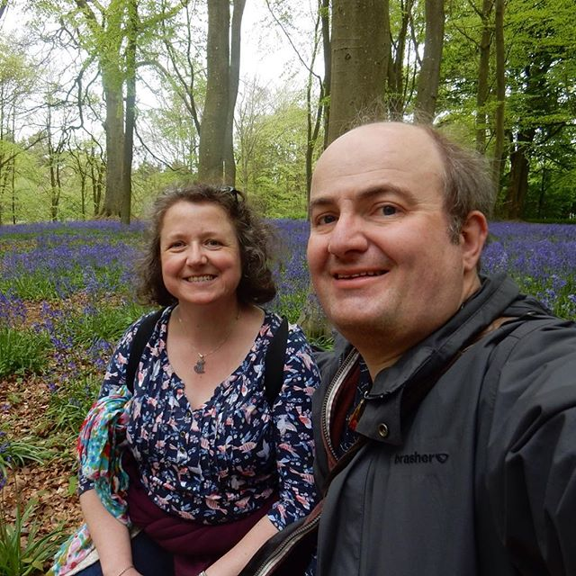 Bluebells at Badbury Woods...