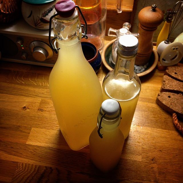 This year's batch... #elderflower #cordial #summerflowers #foodforfree