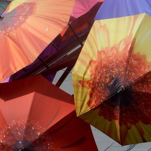 Colourful street art in Bath... #umbrellas