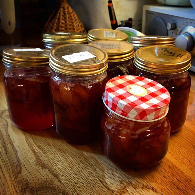 Yummy plummy jam... #plums #jam
