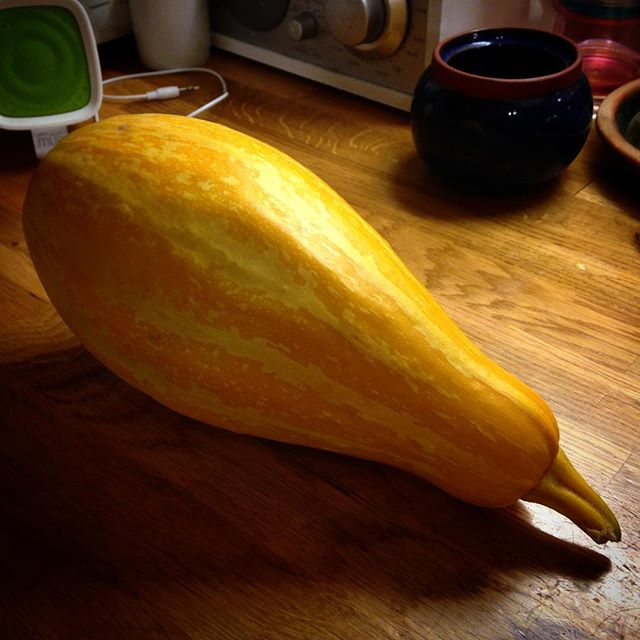 Almost too beautiful to eat. Thank you to @millakontkanen and her allotment for the butternut squash that isn't. Now I just have to find that scrummy recipe I had… #autumn???? #squashes