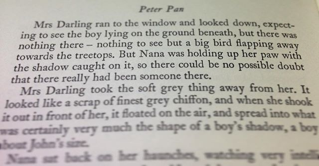 Peter Pan's shadow has got to be one of the finest inventions of children's literature…