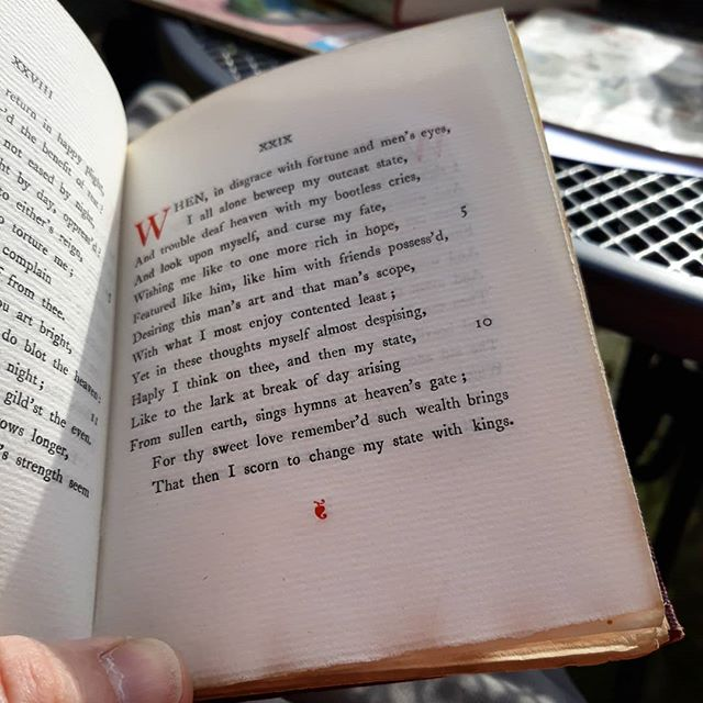 When, in disgrace with fortune and men's eyes… . I've decided that this is the only way to read sonnets… . #sonnets #Shakespeare #books???? #oldbooks #oldbooksmell