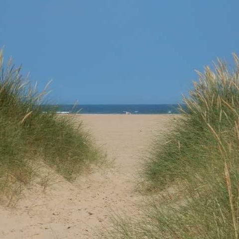 Oh I do like to be beside the seaside. Oh I do like to be beside the sea…