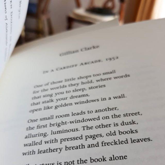 I think I may have just found my #epigraph to the #bookloversguidetobookshops… .#books???? #bookshops #illustration #illustraorsofinstagram #GillianClarke
