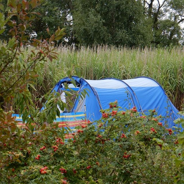 Camping in the Cotswold countryside… #Cotswolds #camping #autumnfruits????????????????????????