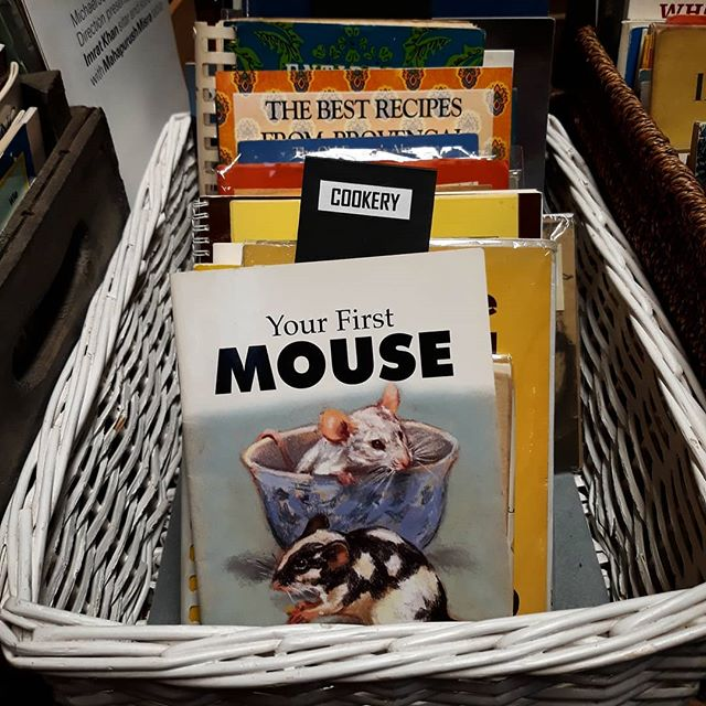 Spotted this slightly unfortunate shelving at @booksandink today… 😂 #cookery #yourfirstmouse #bookshopday