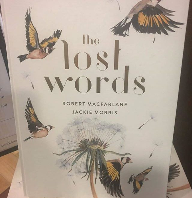 "#Repost @blackwellbooks • • • • • In 2007, when a new edition of the Oxford Junior Dictionary – widely used in schools around the world – was published, a sharp-eyed reader soon noticed that around forty common words concerning nature had been dropped. Apparently they were no longer being used enough by children to merit their place in the dictionary. The list of these ""lost words"" included acorn, adder, bluebell, dandelion, fern, heron, kingfisher, newt, otter, and willow. Among the words taking their place were attachment, blog, broadband, bullet-point, cut-and-paste, and voice-mail. The news of these substitutions – the outdoor and natural being displaced by the indoor and virtual – became seen by many as a powerful sign of the growing gulf between childhood and the natural world.  Ten years later, Robert Macfarlane and Jackie Morris set out to make a ""spell book"" that will conjure back twenty of these lost words, and the beings they name, from acorn to wren. By the magic of word and paint, they sought to summon these words again into the voices, stories, and dreams of children and adults alike, and to celebrate the wonder and importance of everyday nature. The Lost Words is that book – a work that has already cast its extraordinary spell on hundreds of thousands of people and begun a grass-roots movement to re-wild childhood across Britain, Europe, and North America.  https://blackwells.co.uk/bookshop/product/The-Lost-Words-by-Robert-Macfarlane-Jackie-Morris-illustrator/9781487005382  #blackwells #blackwellbooks #blackwellsbooks #blackwellsbookshop #bookstagram #lostwords #thelostwords #nature #dictionary #words #nature"