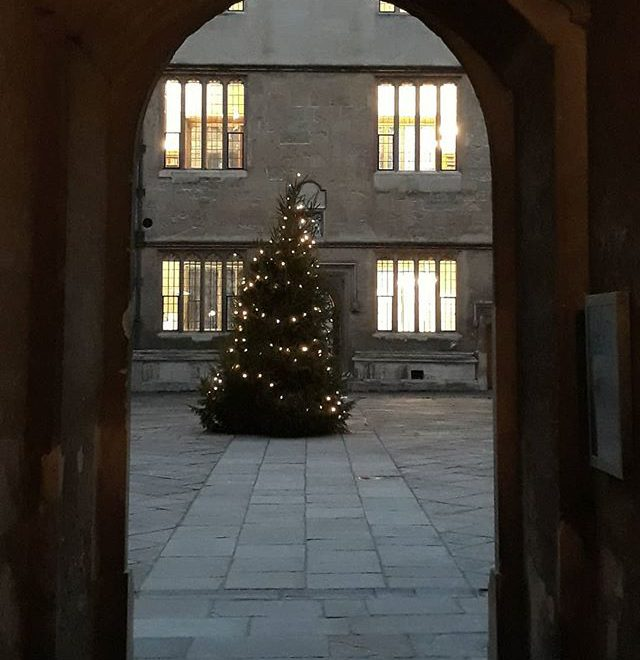 The Bod looking festive with it's twinkling tree… #Oxford #Christmas #festive