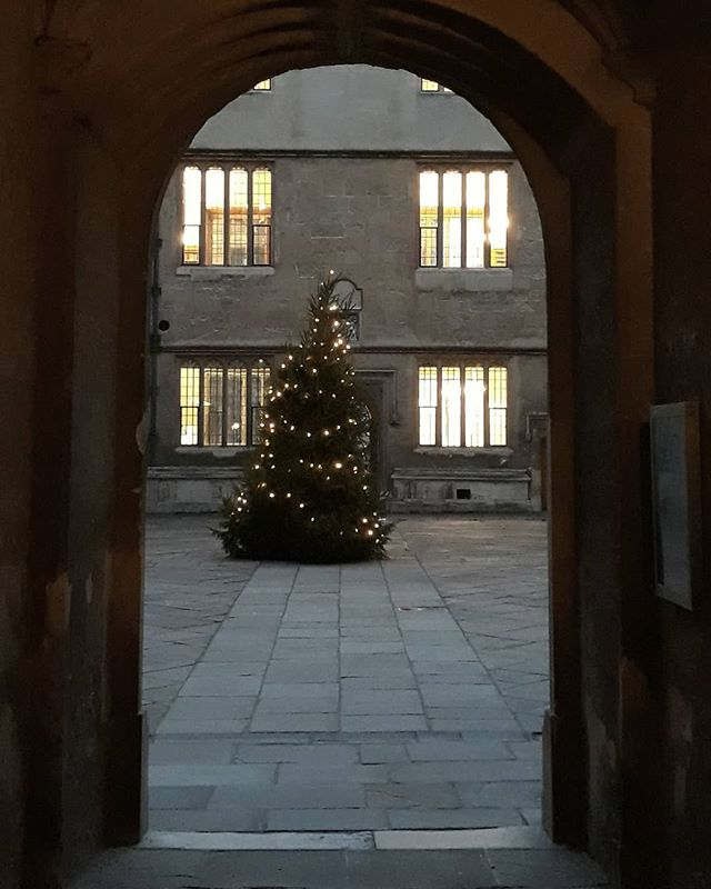 The Bod looking festive with it's twinkling tree... #Oxford #Christmas #festive