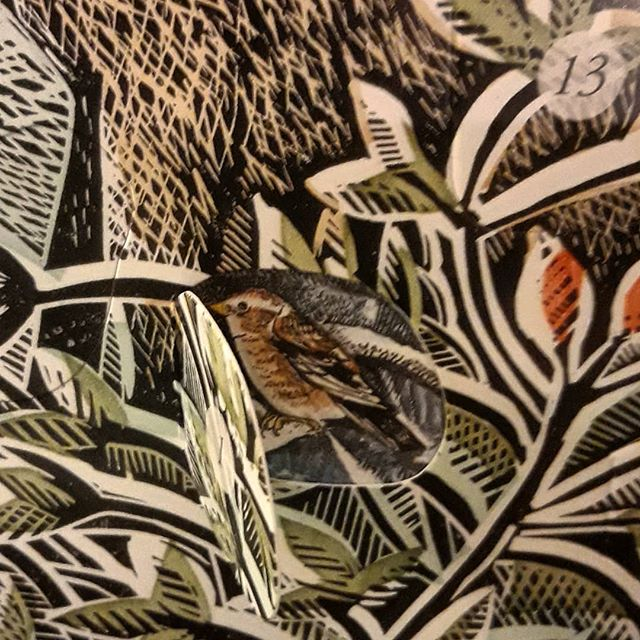 Day 1 of #advent and finding a little bird hiding in our @angelaharding11 #adventcalendar… #Christmas🎄