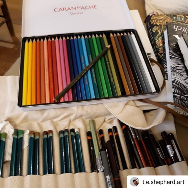 Got any advice on how to use them @kavalociraptor @rach.h.art?  #Repost @t.e.shepherd.art • • • • • Got some new watercolour pencils for Christmas (thanks Father Christmas! 😉) so I'm trying out some new techniques… #illustration #amillustrating #OxfordshireCollection #carandache @cogges @caran_dache