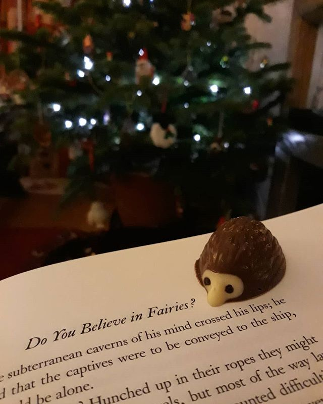I believe in fairies (and chocolate hedgepigs) #amreading #PeterPan