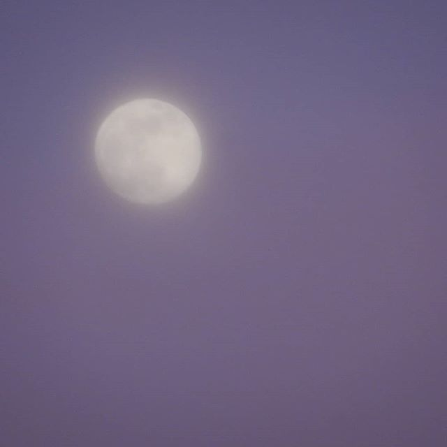 Mysteriously misty moon tonight... #moon #mist #winterskies #redskyatnight