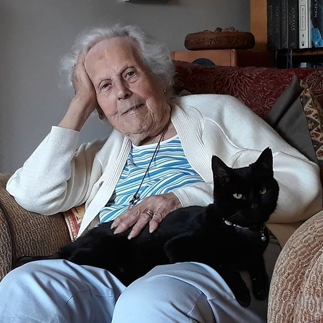 Grannie in the armchair with a cat on her lap. Perfect! @bellafanella #catsofinstagram #granniesofinstagram