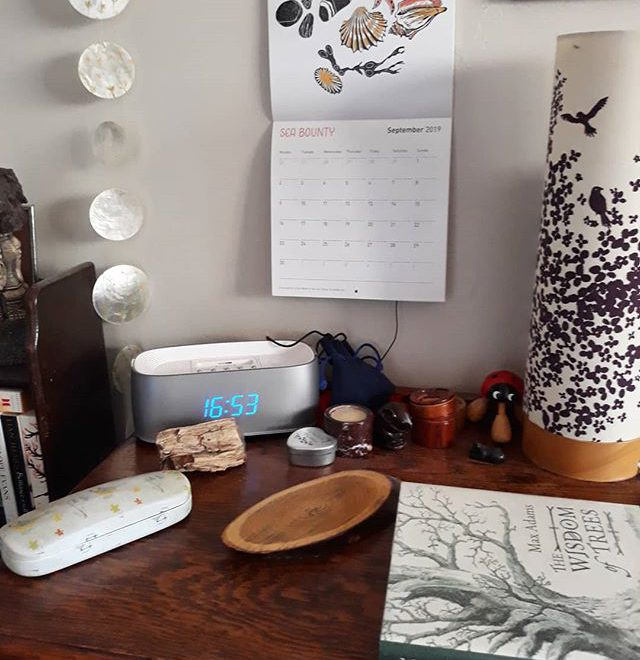 September Sea Bounty by @foxgloveandcowslip with added book about trees, a slice of tree drinks coaster, and a piece of fossilised tree… #nature #naturetable #bedsidetable @21stcenturyyokel