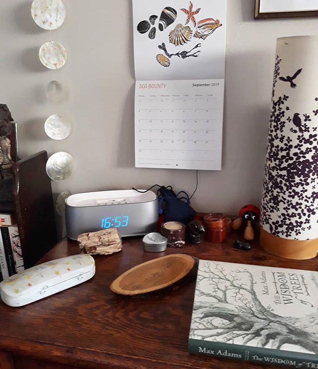 September Sea Bounty by @foxgloveandcowslip with added book about trees, a slice of tree drinks coaster, and a piece of fossilised tree... #nature #naturetable #bedsidetable @21stcenturyyokel