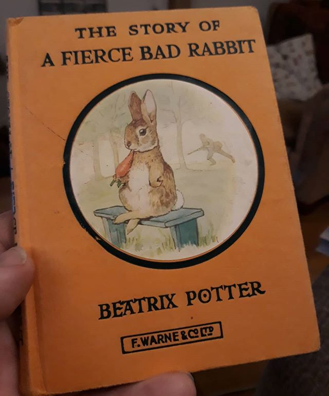 I would like to apologise to @vnemma for inflicting a real life #StoryOfAFierceBadRabbit this morning after I inadvertently left the hutch door open last night and she had to fetch them in from the garden... #DrífaTheEscapologist #NotReallyFierce #NotReallyBad #BeatrixPotter