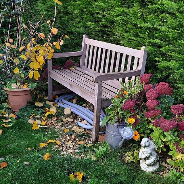 Grannie's bench and Grannie's bunny reunited in the garden... #GrannieFrancis