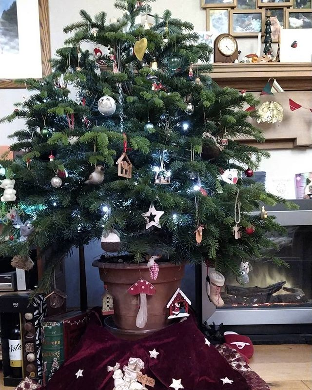 To everyone who steps the house of Christmas at the vaguest hint of New Year... The 24 days of rampant consumerism trust leads up to 25 December is called #Advent. The period from Boxing Day to 5/6 January is called #Christmas.  Relax. Live it. Enjoy it.
